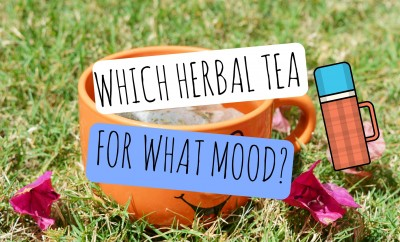 Which Herbal Tea For What Mood?