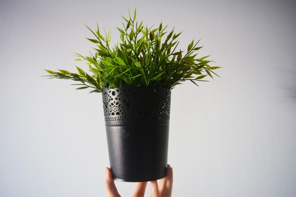 mini haul fake plant and pot