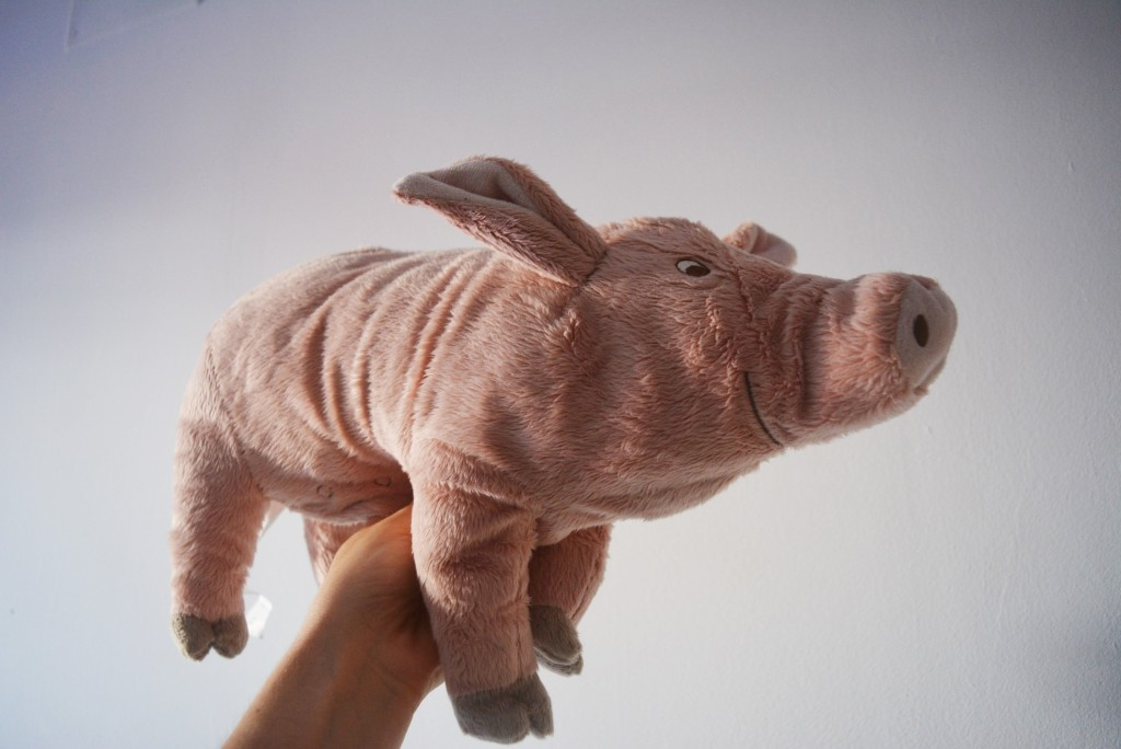 little pig toy